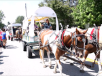 2016 Mackville Harvest Homecoming Festival