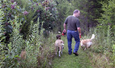 """<div class=""""source"""">Photo submitted</div><div class=""""image-desc"""">Poet Maurice Manning walks his three dogs along one of the 4 miles of paths he has cut to criss-cross his 20-acre wooded farm in Washington County, which includes an 1850s farmhouse. </div><div class=""""buy-pic""""></div>"""