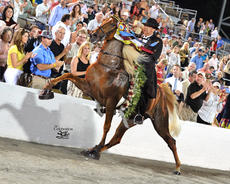 "<div class=""source"">Photo submitted</div><div class=""image-desc"">Pictured is world grand champion Walk Time Charlie, ridden by Chad Baucom.</div><div class=""buy-pic""></div>"