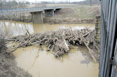 "<div class=""source"">Jimmie Earls</div><div class=""image-desc"">This view from the covered bridge near Mooresville shows debris clogging the waterway beneath.</div><div class=""buy-pic""><a href=""/photo_select/2210"">Buy this photo</a></div>"