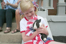 """<div class=""""source"""">Jimmie Earls</div><div class=""""image-desc"""">Andrea Clements enjoys the Fourth of July in front of Springfield's old courthouse with """"Oreo"""", her pet rabbit.</div><div class=""""buy-pic""""><a href=""""http://web2.lcni5.com/cgi-bin/c2newbuyphoto.cgi?pub=023&orig=fourth08-web5.jpg"""" target=""""_new"""">Buy this photo</a></div>"""