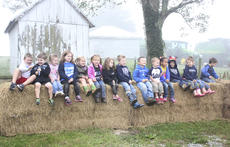 """<div class=""""source"""">Photo by Brandon Mattingly</div><div class=""""image-desc"""">St. Dominic made what has become a yearly field trip for kindergarteners to James Sidney and Tara Osbourne's farm on Mackville Road. The Osbournes doubled their guests this year, welcoming the preschool class as well.</div><div class=""""buy-pic""""><a href=""""http://web2.lcni5.com/cgi-bin/c2newbuyphoto.cgi?pub=023&orig=img_9461.jpg"""" target=""""_new"""">Buy this photo</a></div>"""