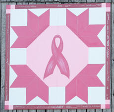 "<div class=""source"">Jeff Moreland</div><div class=""image-desc"">This barn quilt piece featuring the breast cancer logo was hung on the farm of Barbara Hale Wheatley on Bloomfield Road Monday morning. </div><div class=""buy-pic""><a href=""/photo_select/2248"">Buy this photo</a></div>"