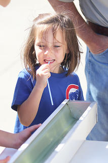 Camdyn Hensley, 5, gets set for her turn at the minnow races during Saturday's events.