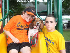 """<div class=""""source"""">Jeff Moreland</div><div class=""""image-desc"""">Kailey and Josh Thompson posed with their dog, Luke, at Idle Hour Park last week. Luke had been missing for two and a half years before he was found in Indiana and returned to the Thompson family.</div><div class=""""buy-pic""""><a href=""""/photo_select/8830"""">Buy this photo</a></div>"""