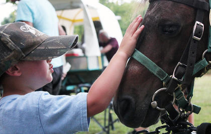Thousands joined in the fun July 28 at the Manton Music Jamboree, held annually to celebrate local musical talent. This year's celebration included performances by several bands, food vendors, horseback rides, and more.